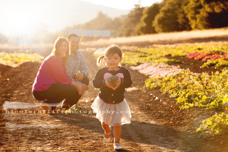 brookings-gold-beach-curry-county-oregon-family-photographer