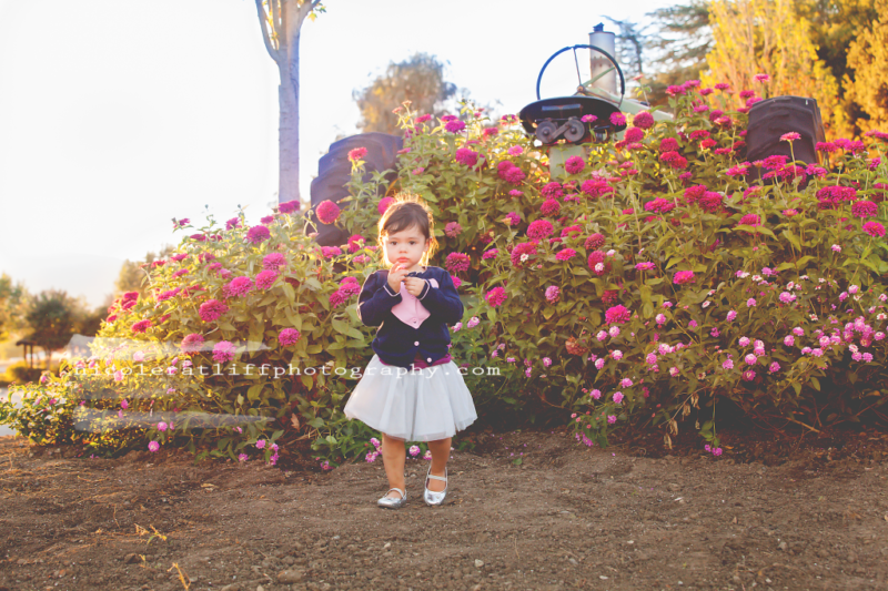 brookings-oregon-curry-county-family-photographer